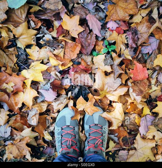 Feet with hiking shoes standing on ground with autumn leaves - Stock Image