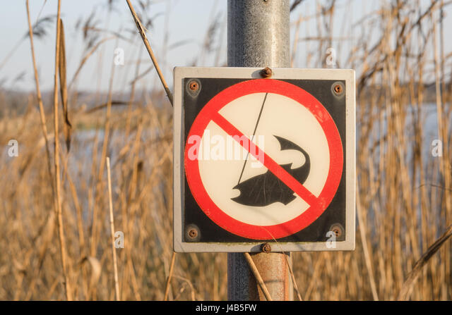 No fishing sign on a post by a river with lots of reeds in the wild nature in the fall - Stock Image