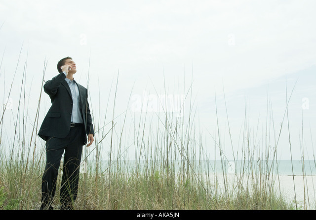 Businessman standing among tall reeds, using cell phone, looking up - Stock Image