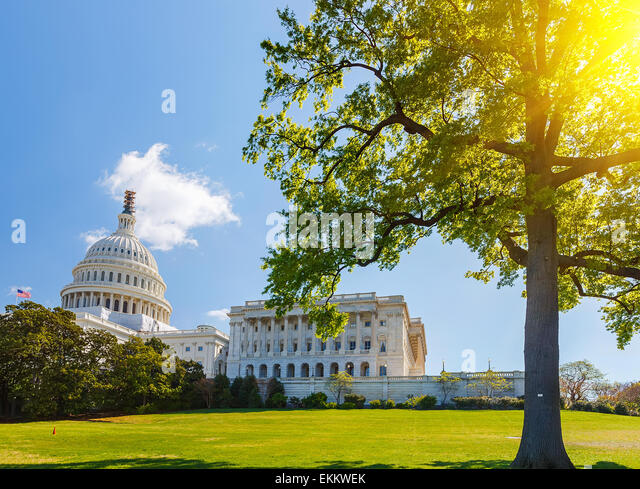 US Capitol at sunny day - Stock Image