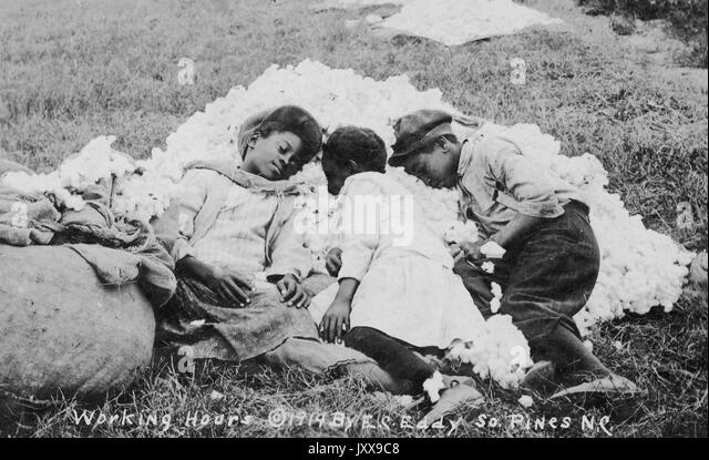 Three African American children asleep in a pile of raw cotton in grass, full length portrait, 1914. - Stock Image