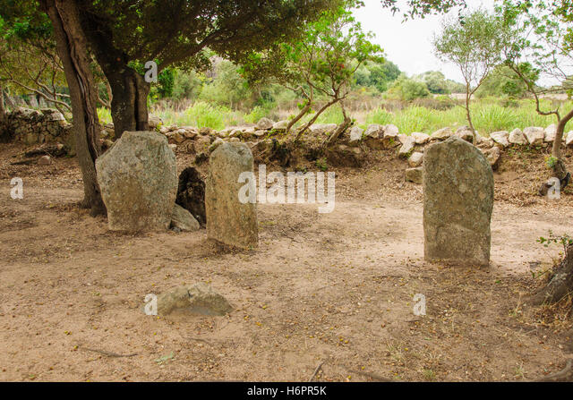 The menhirs alignment of Renaggiu, in the megalithic site of Cauria, Sartene area, Corsica, France - Stock Image
