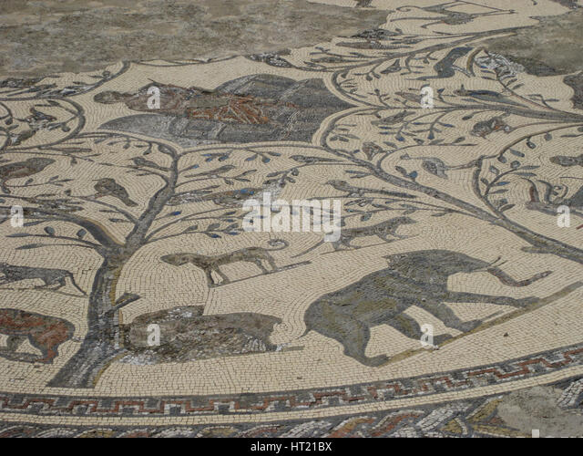 The Orpheus Mosaic at the ruins of Volubilis,Morocco, an important outpost of the Roman Empire foun Artist: Werner - Stock Image