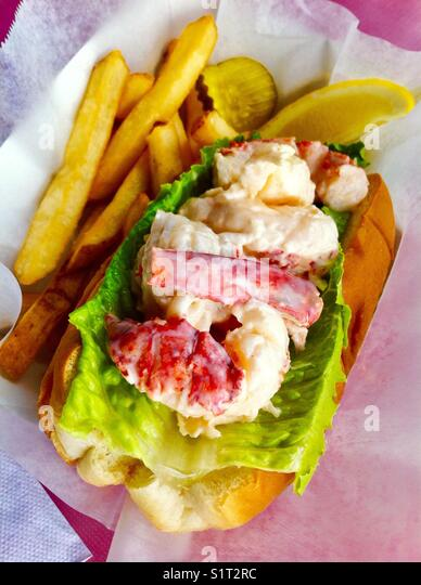 Maine lobster roll - Stock Image