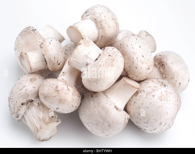 Handful of champignons on a white background - Stock Image