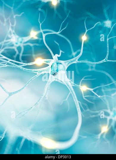 Active nerve cells, artwork - Stock Image