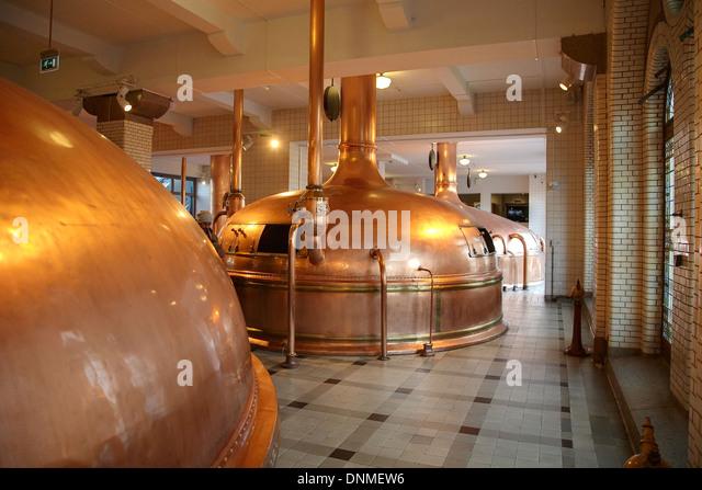 Brewing and heineken