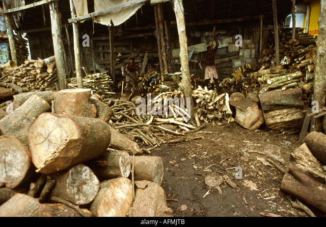 deforestation in kerala Short note monitoring of deforestation and land use changes (1925-2012) in idukki district, kerala, india using remote sensing and gis reshma m ramachandran1 & c sudhakar reddy1.