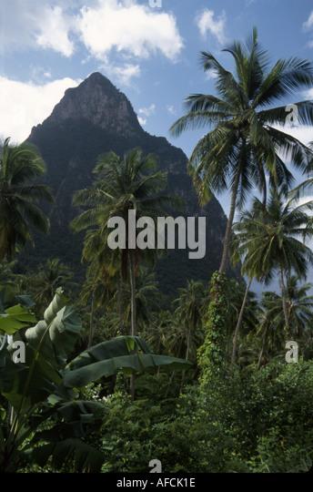 West Indies St. Lucia Morne Coubaril Plantation rainforest Petit Piton mountain - Stock Image
