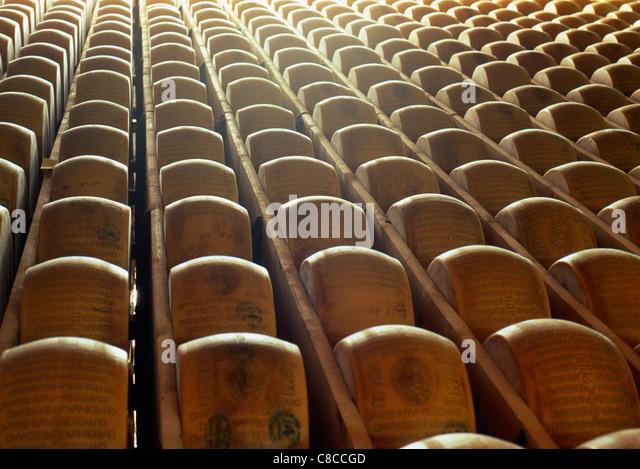 Parmesan cheeses maturing - Stock Image