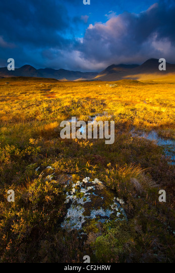 Early morning sun on Rannoch Moor with the dominating peak of the Black Mount in the distance. - Stock Image