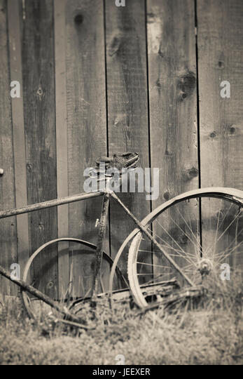 Old broken vintage bicycle and wooden wall. Rural still life. - Stock-Bilder