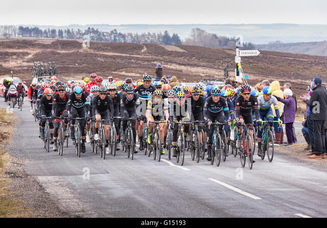 Tour de Yorkshire 2016, the peloton or main pack of riders racing up Blakey Ridge, above Farndale, North York Moors - Stock-Bilder