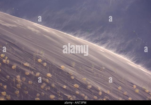 Spindrift at Dead Vlei in Namib Desert in early morning light - Stock Image