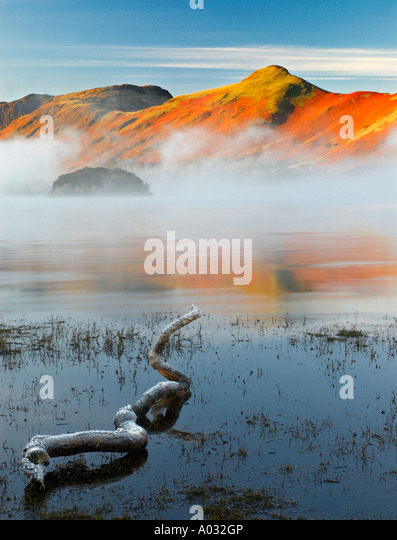 A Frozen Log On Derwentwater With View Of Catbells Lake District Cumbria UK - Stock Image