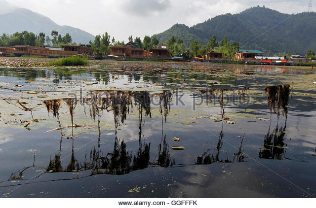 essay on dying lake of kashmir Free sample essay on the most beautiful but the visit which has a lasting impression on my mind is the visit of kashmir the tattapani or the sulphur lake.
