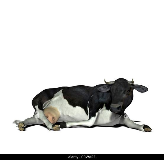 cow illustration - Stock-Bilder