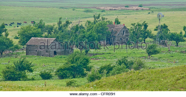 Old Farmstead_Rooks County, Rooks County Kansas, November 9, 2008 - Stock Image