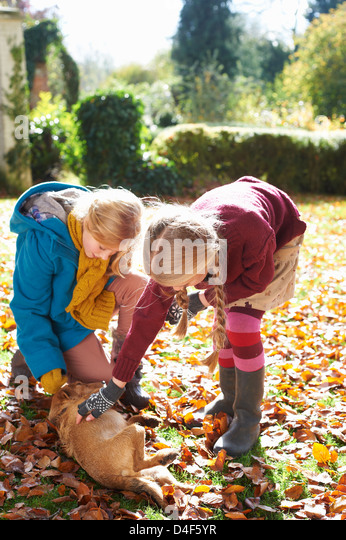 Girls petting dog in autumn leaves - Stock Image