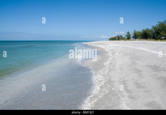 Beach covered in shells, Captiva Island, Gulf Coast, Florida, United States of America, North America - Stock Image