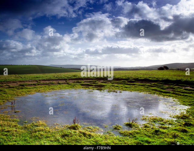 Dew pond on the South Downs Way nr Falmer, Brighton, Sussex, looking south west in the South Downs National Park - Stock Image