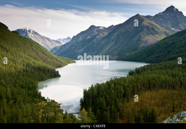 Lake Kucherla, Mt. Belukha Park, Altai Republic, Siberia, Russia - Stock Image