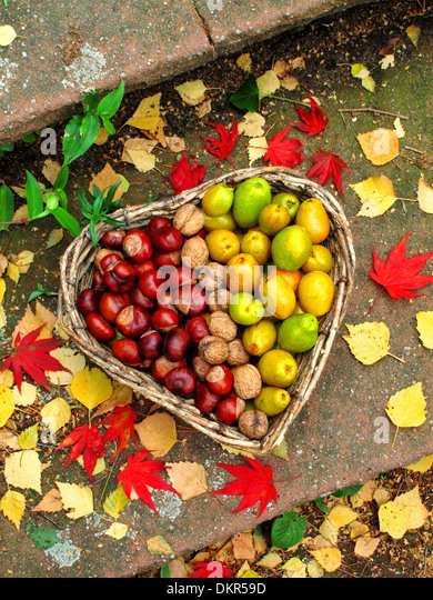 Basket, heart, form, shape, chestnuts, walnuts, leaves, autumn, arranged, concepts, - Stock-Bilder
