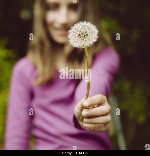 A ten year old girl holding a dandelion clock seedhead on a long stem. - Stock Image