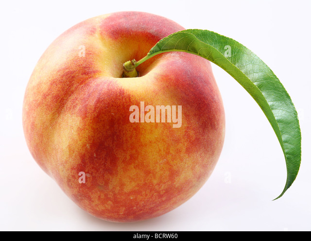 Peach on a white background - Stock Image