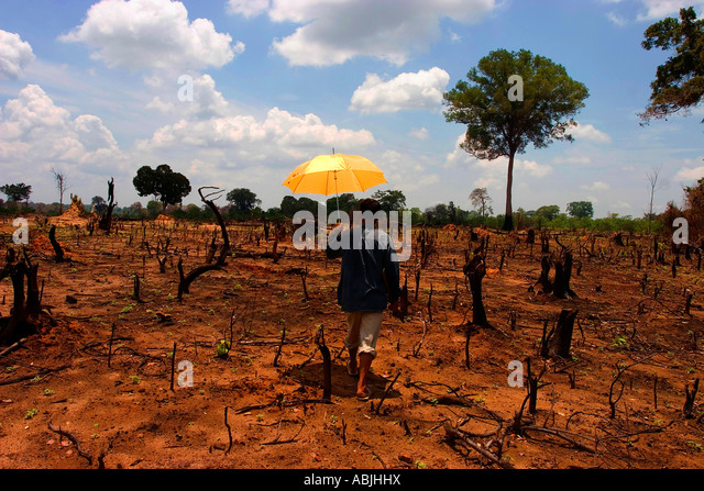 Laos suffers from a number of environmental problems, the most important of which are related to deforestation. - Stock Image