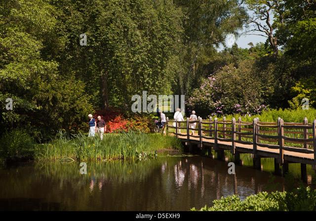 Savill Garden Stock Photos Savill Garden Stock Images Alamy