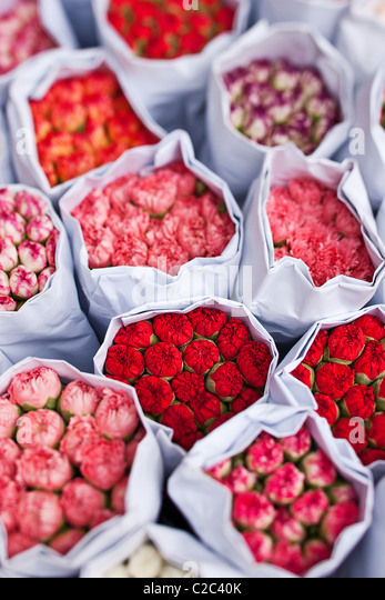 Bunches of carnations - Stock Image
