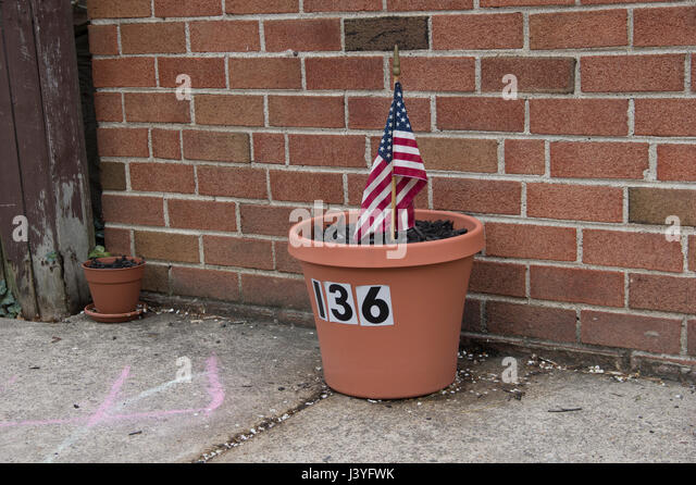 flower pot against a brick wall with the number 136 on it and an small American flag stuck in it - Stock Image