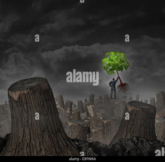 Disaster plan concept as a person standing on a hill in a dead forest with cut trees holding up a healthy young - Stock-Bilder
