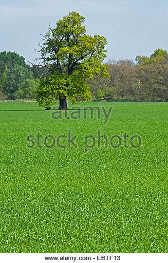 single women in shrub oak 100% free online dating in peekskill 1500000 daily active members.