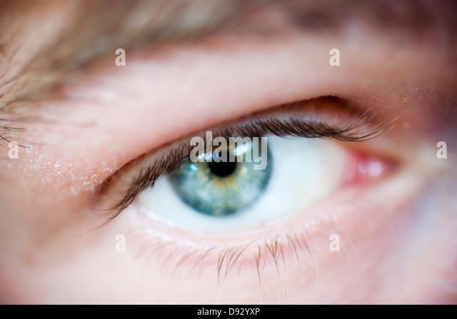 Blue eye, close-up - Stock Image