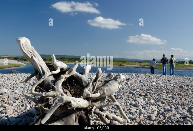 Driftwood beached at Spey Bay with family looking across estuary - Stock Image