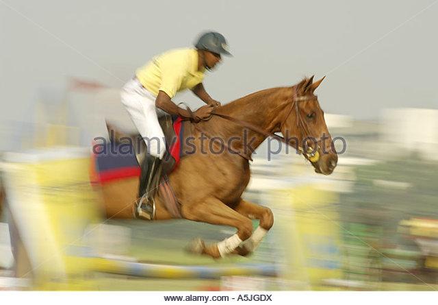 festival equestrian sports horse display show jumping Mumbai Maharashtra India - Stock Image