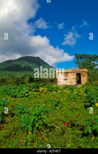 Island of Nevis St Kitts and Nevis Caribbean, old nevesian wood building architecture with Mount Nevis in background - Stock Image
