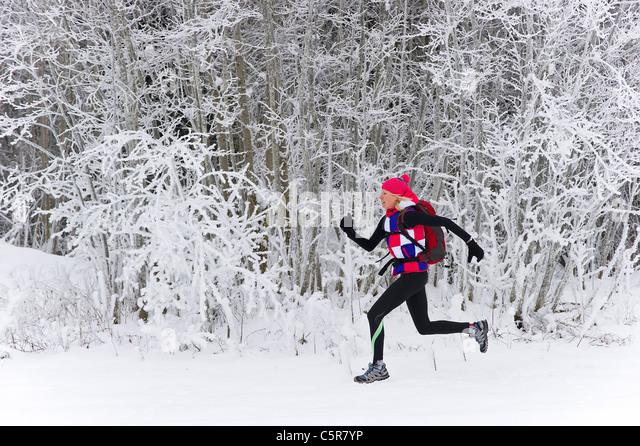 A jogger running quickly through a winter forest. - Stock-Bilder