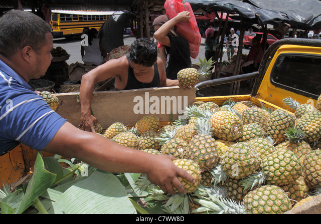 Nicaragua Managua Mercado Roberto Huembes market marketplace shopping street vendor fresh fruit pineapple pickup - Stock Image