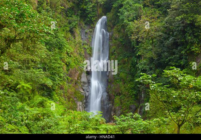 Trafalger Falls, Morne Trois Pitons National Park, Dominica, Caribbean Sea, UNESCO World Heritage Site - Stock-Bilder