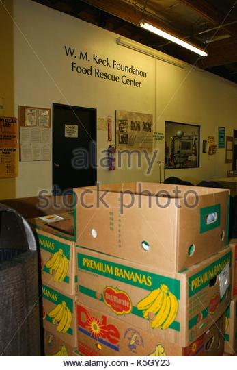 Food Bank. Nick Lachey helps out at the Los Angeles Food Bank on Friday afternoon.   - Stock Image