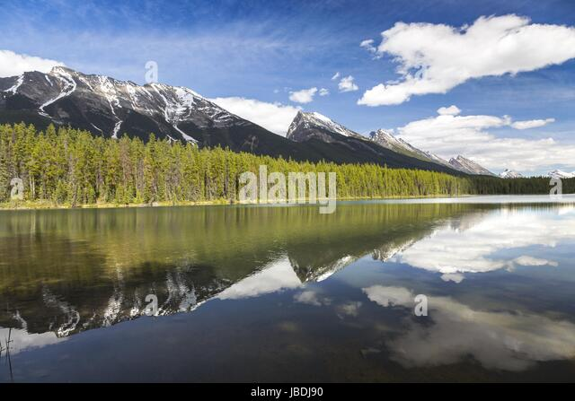 Honeymoon Lake Jasper National Park Rocky Mountains Alberta Canada - Stock Image