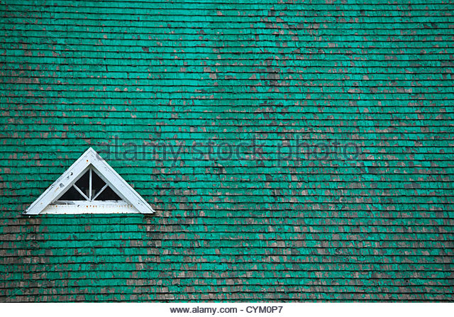 Window in green roof - Stock Image