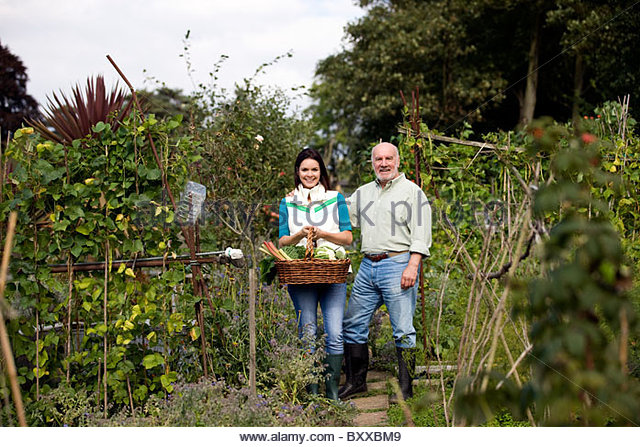 A father and his daughter on an allotment, holding a basket full of vegetables - Stock Image
