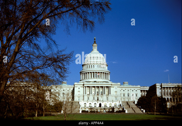 Capitol Building, Washington D.C. - Stock Image