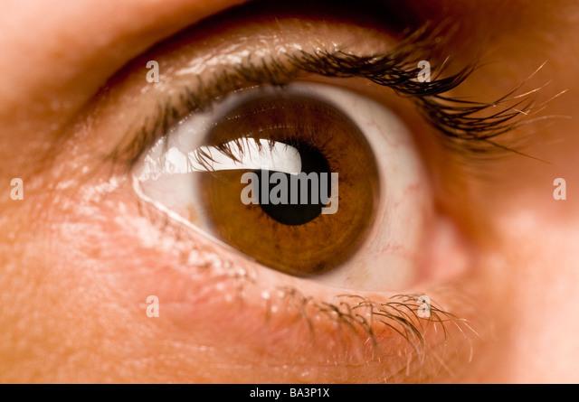 brown eye - Stock Image