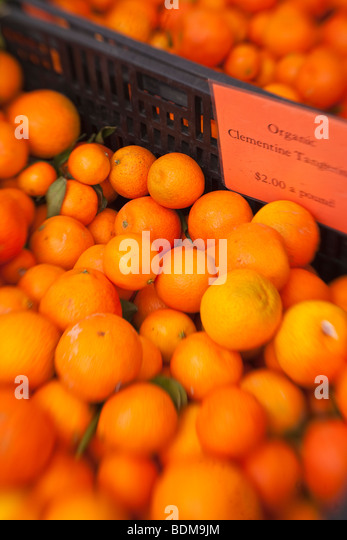 organic Clementine tangerines, Farmer's Market, Santa Barbara, California, United States of America - Stock Image
