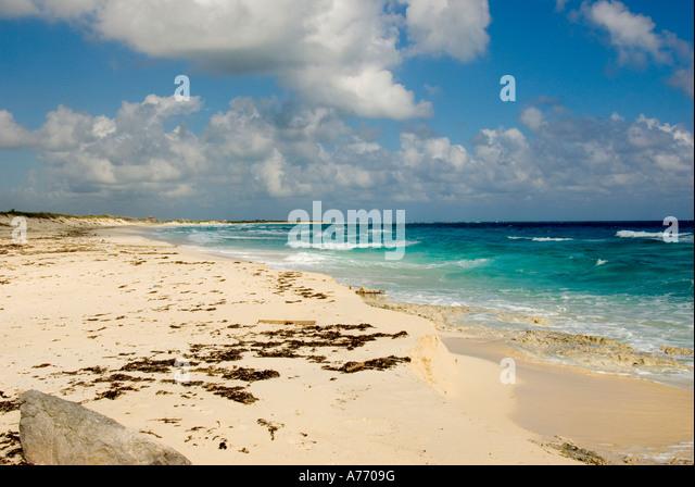Mexico Cozumel Punta Sur parque ecological park beach - Stock Image